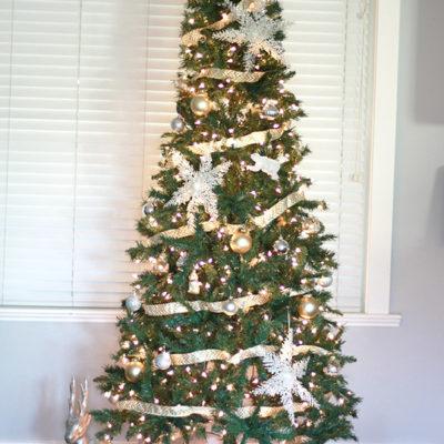 At Home for Christmas