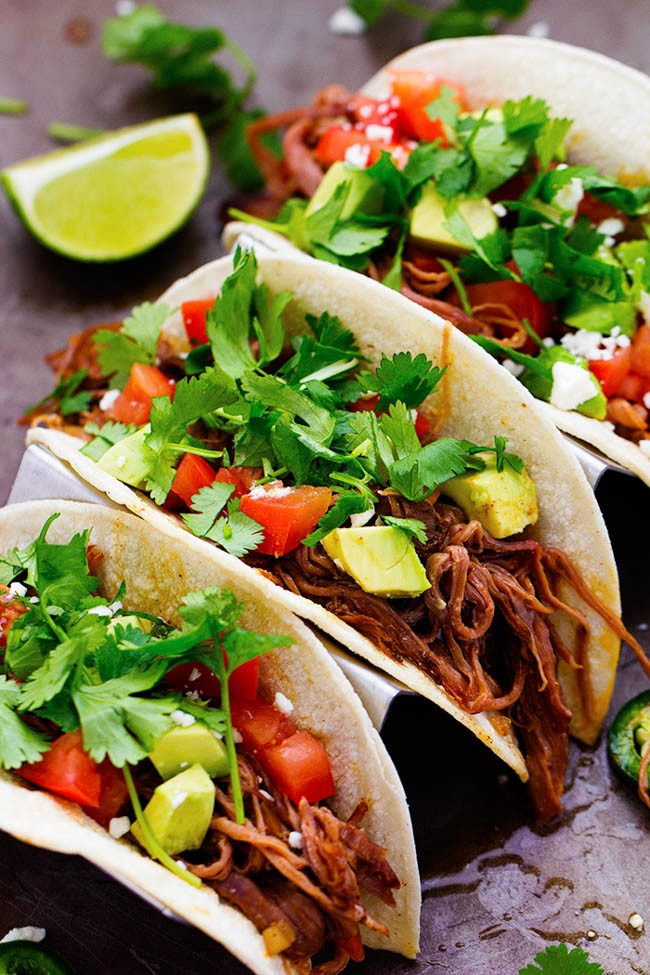 carnitas the recipecritic