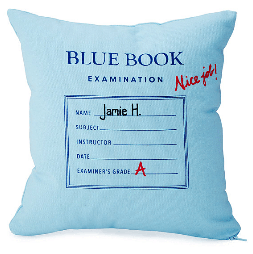 personalized-blue-book-pillow // custom pillow ideas