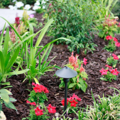 Curb Appeal – Our Front Yard Makeover