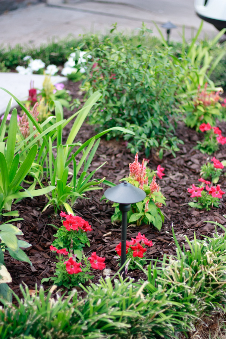 flower bed with curb appeal landscaping: simple curb appeal ideas