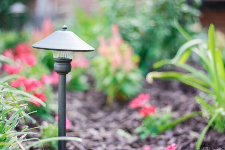 low voltage lighting for curb appeal landscaping: simple curb appeal ideas