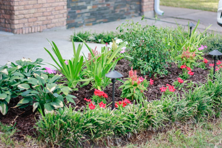 shot of flowers bed for curb appeal landscaping: simple curb appeal ideas