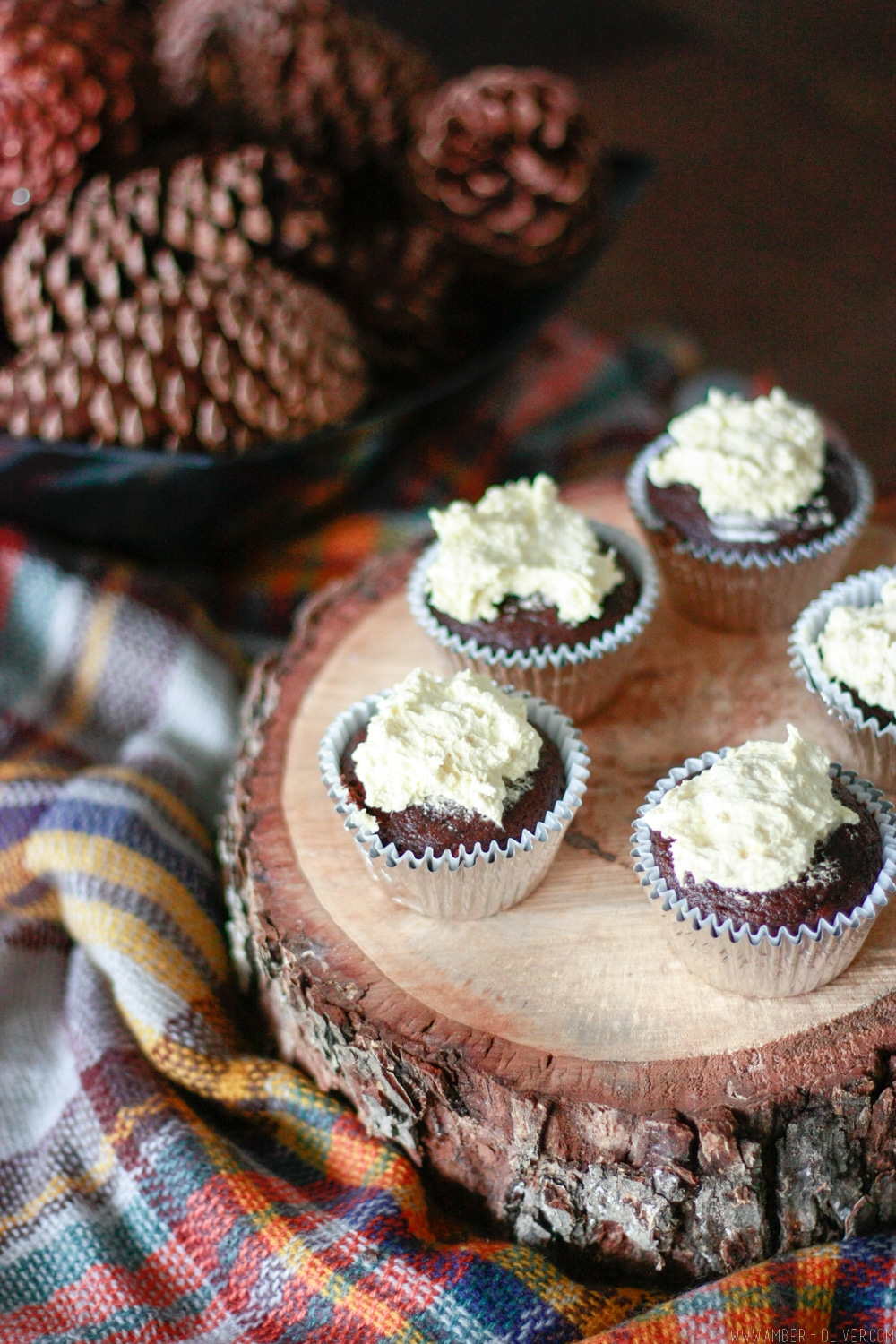 The BEST chocolate cupcakes use only 2 ingredients!
