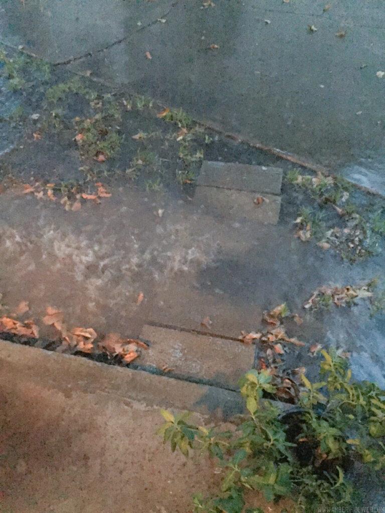 Backyard Update A Rainwater Drainage Solution