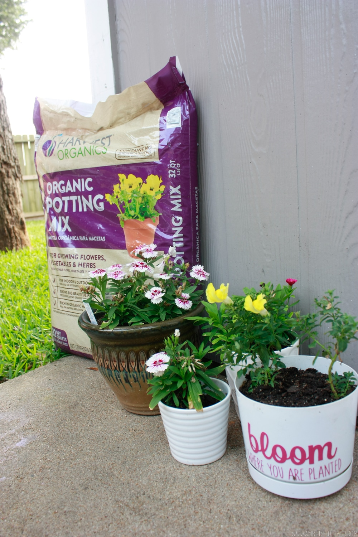 DIY Flower Box - How to build a window box