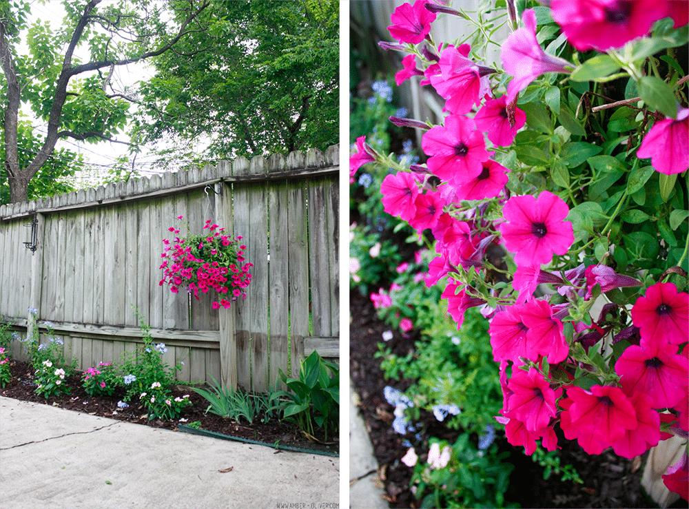 How To Make Your Backyard An Oasis