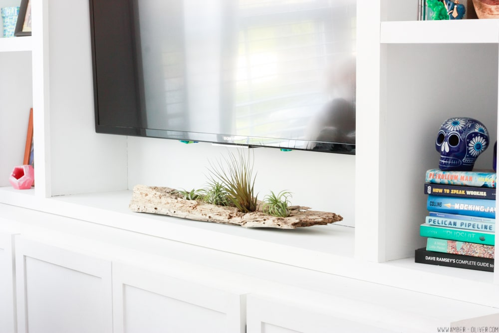 Driftwood DIY Airplant Holder