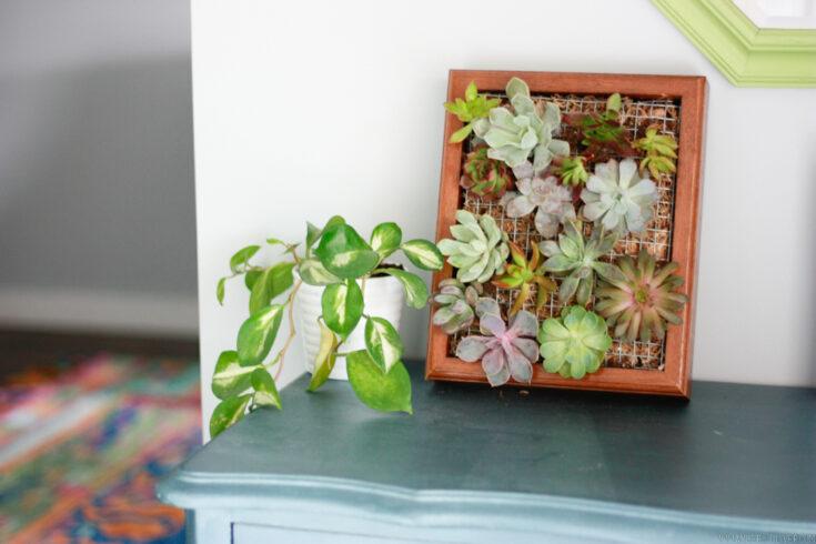succulent diy planter