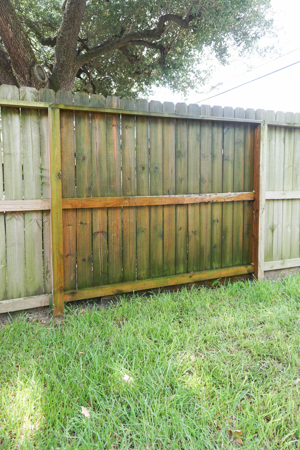 How to clean wood fence - in process