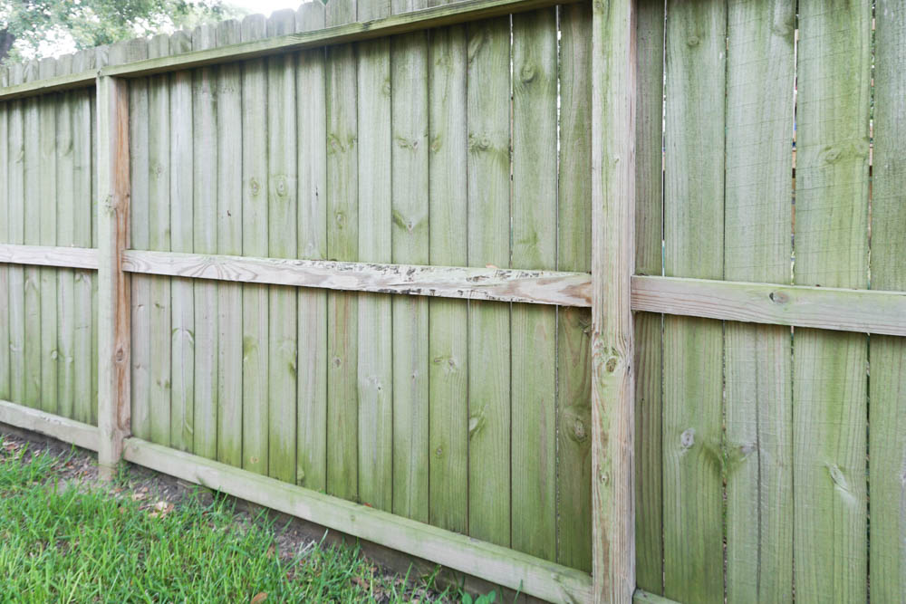How to clean wood fence - the dirty before!