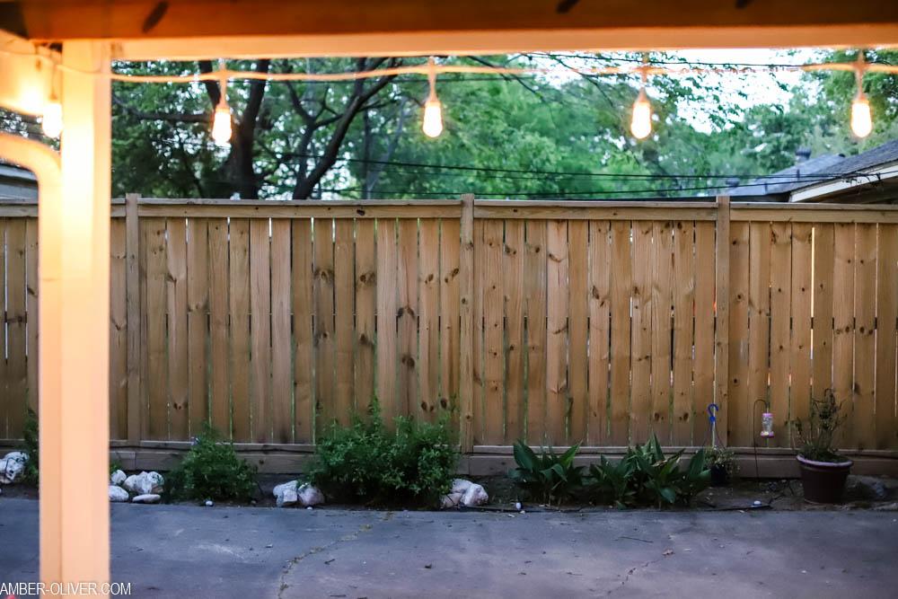 led color changing lights in the garden (enbrighten landscape lights)