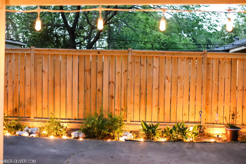 led color changing lights in the garden (enbrighten landscape lights)