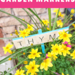PIN IMAGE for diy plant markers