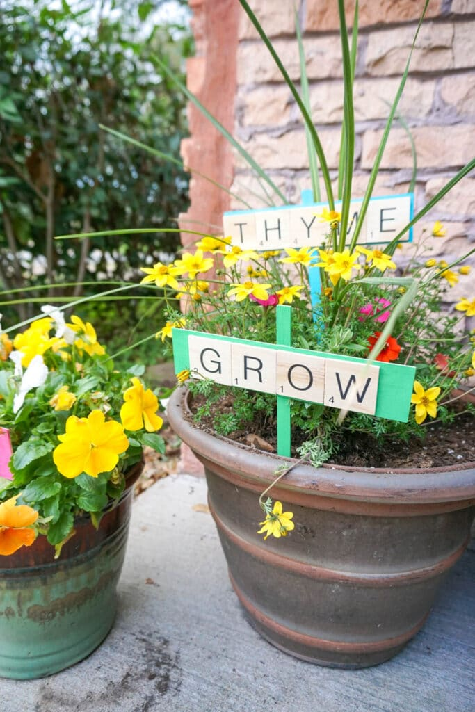 DIY plant markers in with bright yellow flowers