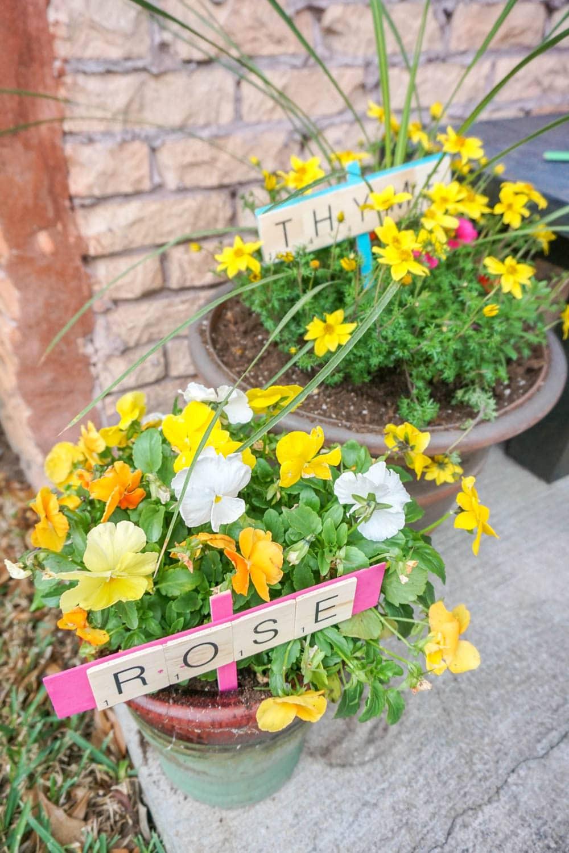 colorful DiY garden markers