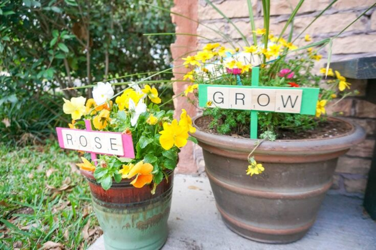 cute diy plant markers in potted plants