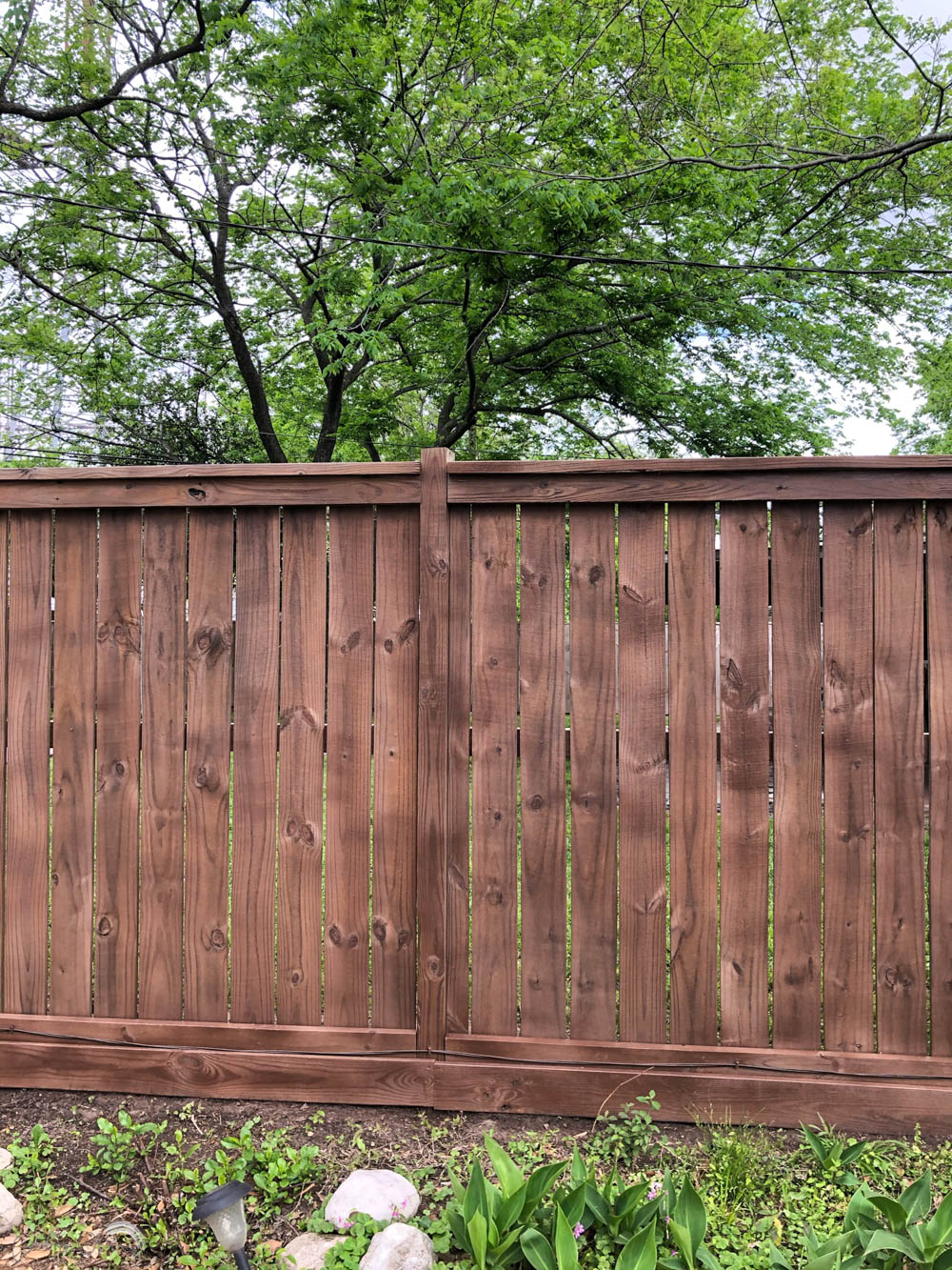 fresh stain on a wood fence
